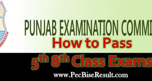 PEC Grade 5th 8th Class Exams How to pass
