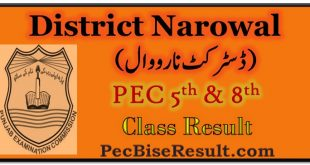 PEC Five Eight Class Result 2018 Narowal