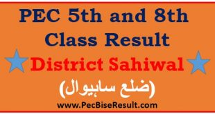 Sahiwal 5th 8th Class Result 2018