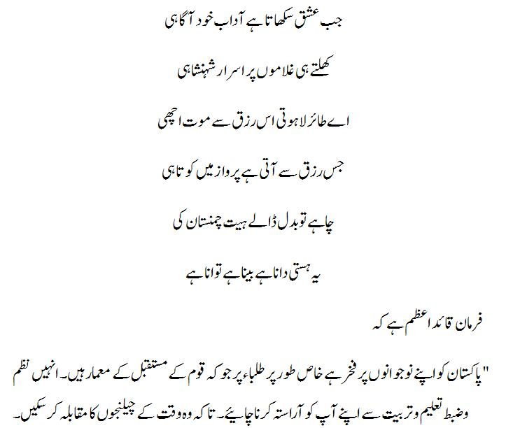 Indepence day speech in urdu Custom paper Example