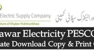 WAPDA PESCO Bill Duplicate Download Print Peshawar Electric Supply Company