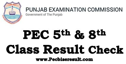 Online Check PEC 5th & 8th Class Result 2019