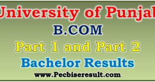 Pu B.com Part 1 & 2 Annual Result 2019-20