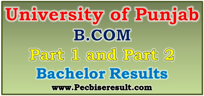 Pu B.com Part 1 & 2 Annual Result 2018-19