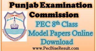 Punjab 8th Class Model Papers 2021