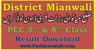 District Mianwali 5th 8th Class Result 2021