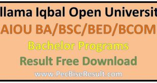 AIOU BSC Result 2019