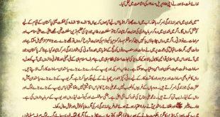 Quaid e Azam Said Debate