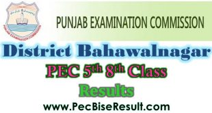 2019 Result Five Eight Class Bahawalnagar