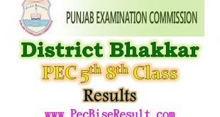 District Bhakkar 5th 8th Class Result 2019