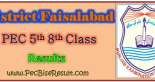 PEC Five Eight Class Result 2019 Faisalabad