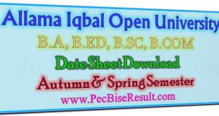 Allama Iqbal Open Unversity BA Date Sheet 2020 to 2021