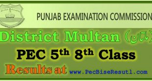 Multan PEC 5th 8th Class Result 2019