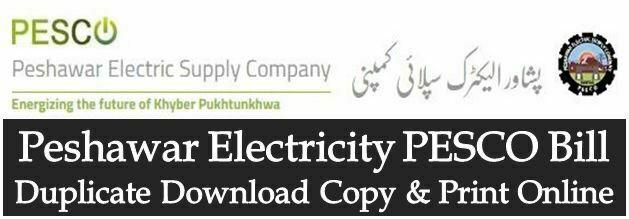 WAPDA PESCO Bill Duplicate Download Print Peshawar Electric Supply Company