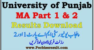 PU MA Result Part 1-2 University of Punjab 2021