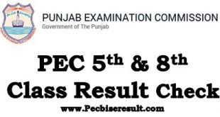 Online Check PEC 5th & 8th Class Result 2021