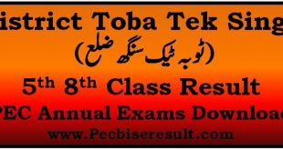 District Toba Tek Singh 5th 8th Class Result 2019 PEC