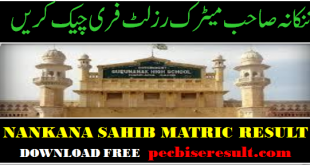 Lahore Board district Nankana Sahib Matric Result 2020