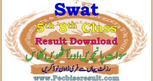 Download Swat 8th Class Result 2020
