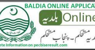 Punjab local government act 2019 in Urdu pdf