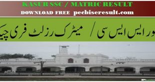 Lahore Board District Kasur Matric Result 2020