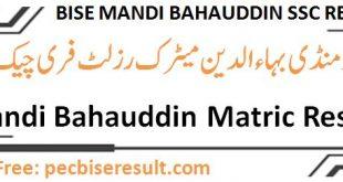 Bise Mandi Bahauddin Board Matric Result 2020 Online