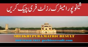 Lahore Board district Sheikhupura Matric Result 2020