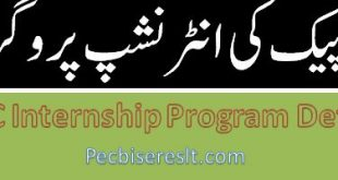 China Pakistan Economic Corridor Internship Program