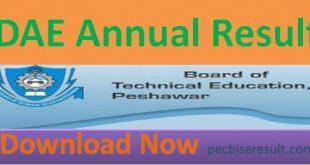 KPBTE DEA DAE Annual Result 2020 Online