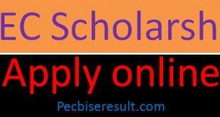 PEC Scholarships 2020