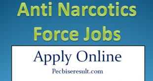ANF Latest jobs 2020