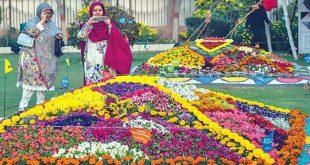 Marigold Festival In Karachi dates