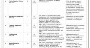 Pakistan Engineering Council Department Job 2021.
